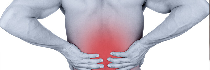 Bulging and Herniated Discs – Explained